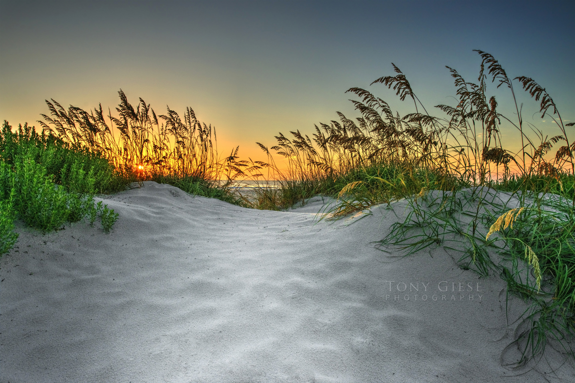 Daytona Beach path leading to sunrise